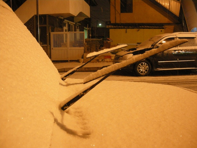 snow wipers