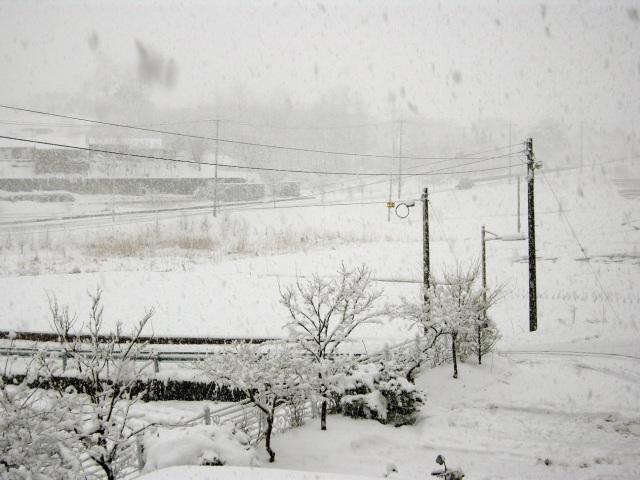 2nd winter in Geojin